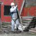 Vancouver Asbestos Removal Pros